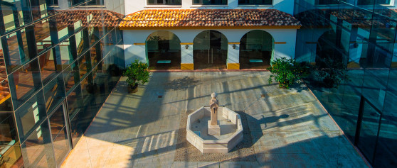 Pack San Valentín en Hotel Cortijo Santa Cruz